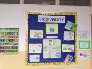 Biodiversity 3
