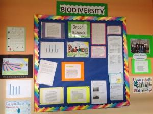 Green Schools Notice Board