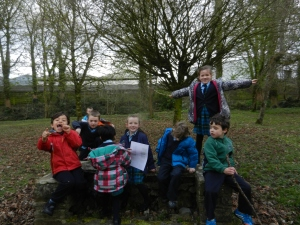Senior Infants had a Treasure Hunt in the Demesne. We had three teams and we had to find all the places that were in our photographs. there was something hidden in each place and we had to work hard to find it. It was tricky but great fun. Stan found a bird's nest. We did not disturb it. Finding 'Treasure' is exciting.